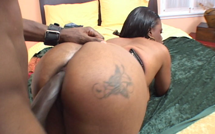 Popular hd porn site for big black asses