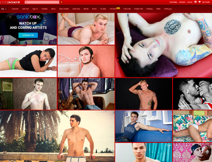 Top premium sex website featuring tons of boy live webcams