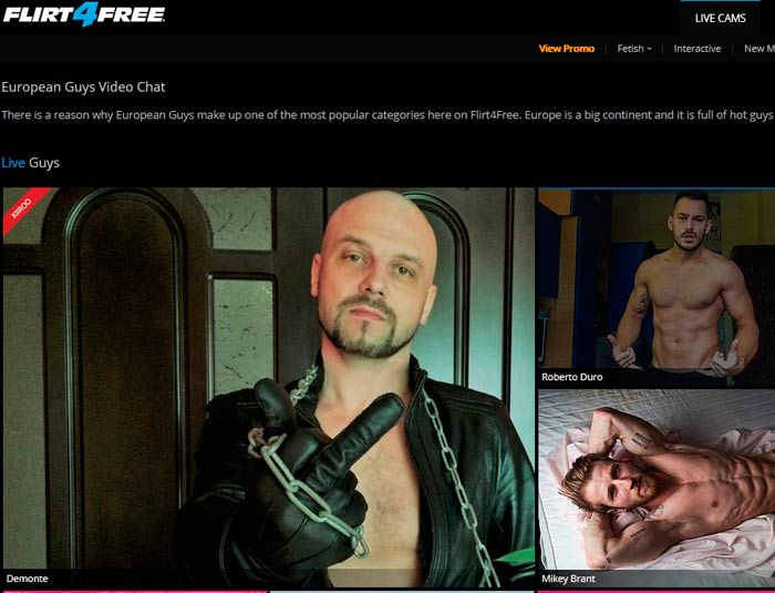Greatest hd sex website featuring hot European gay males